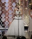 71st_Annual_Golden_Globe_Awards__show_28729.jpg